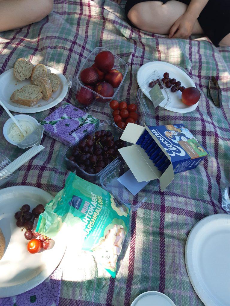 Feelix-ryhmäläisten piknik-eväät.
